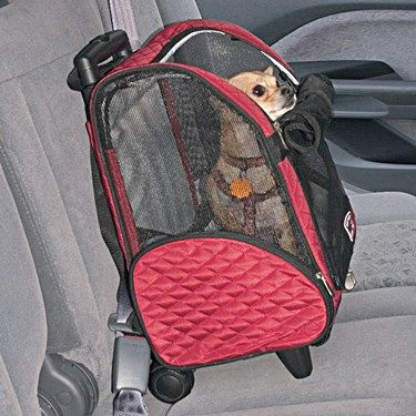 The Snoozer Wheel Around 4-In-1 Pet Travel Carrier is a very sturdy, comfortable, and safe carrier. Read this review.