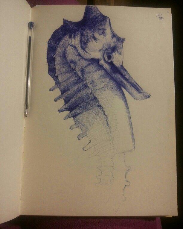 Cavalluccio marino a penna blu di chiara paduano