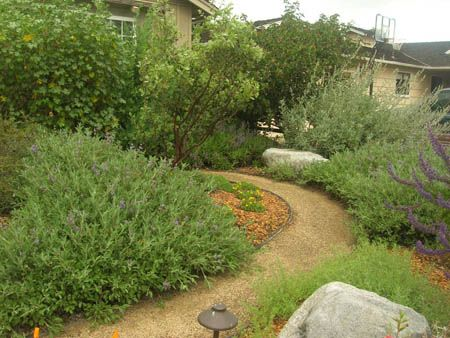 Example of northern california natives in landscape design for California native landscape design
