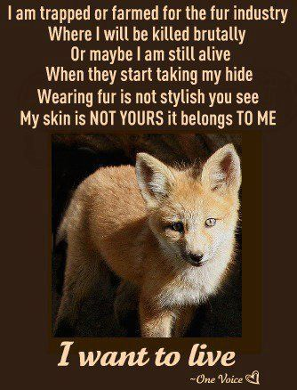 You Re Not Cool When You Wear Real Animal Fur It Shows