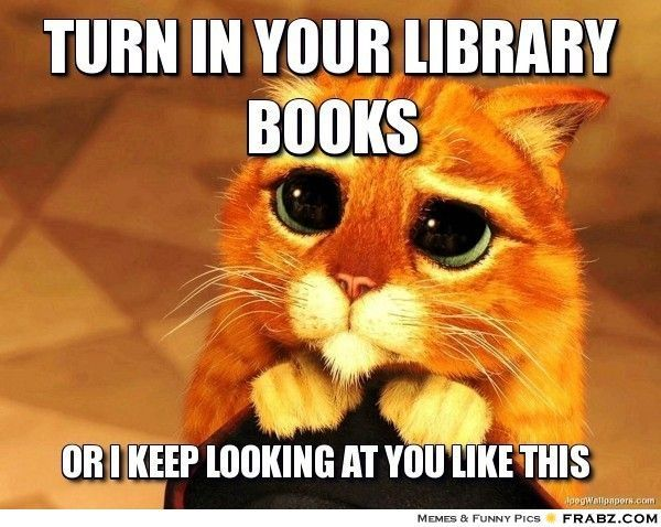 19 Situations That Will Make Library Lovers Smile