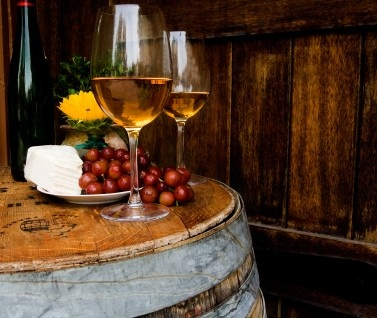 White wine degustation, Torrontes and cheese and grapes, Salta 2009