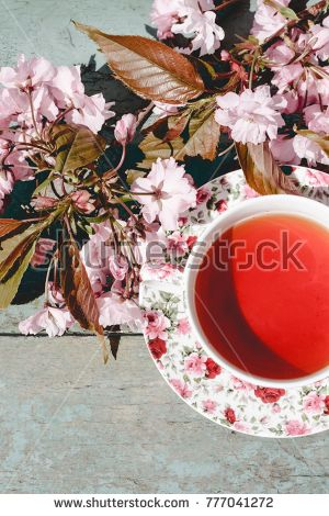 Beautiful Spring Japanese cherry blossom and an English cup of tea