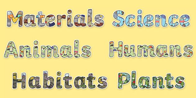 Science Display Lettering - Science lettering, Science display