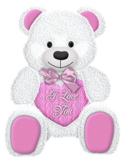 Valentines Day White Teddy with Pink Heart PNG Picture