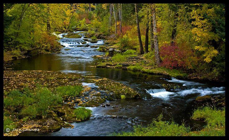 trout lake wa   Trout Lake Creek, Washington I love this creek!