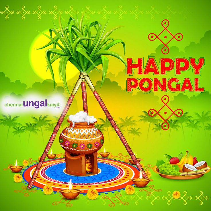 We pray that this festival may be the start of your brighter days filled with happiness, good luck, and prosperity. #ChennaiUngalKaiyil Wishing you a Very Happy Pongal!!!!! #HappyPongal #HappyPongal2018 #Pongal2018