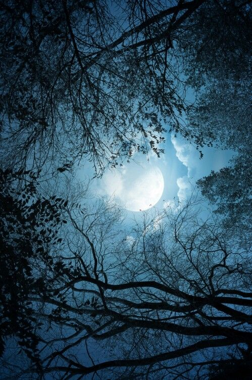 (:Luna:)