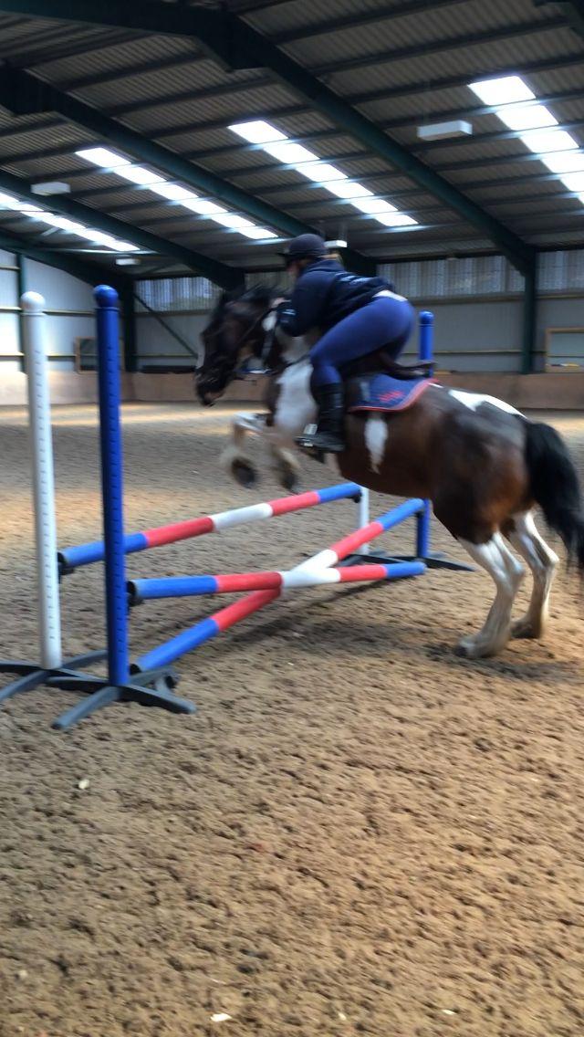 Jumpingg #equestrian #showjumping