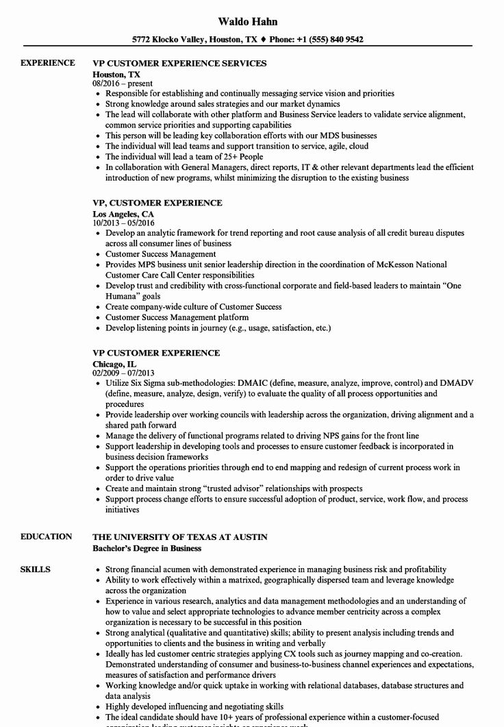 Customer Success Manager Resume Inspirational Vp Customer