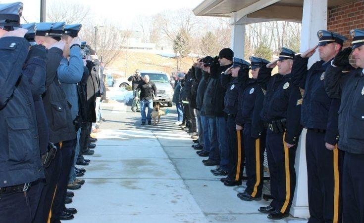 O cachorro Judge recebeu o último adeus do departamento de polícia do Deptford, em Nova Jersey, em homenagem normalmente prestada a agentes. Considerado herói dentro da corporação, Judge teve de ser sacrificado na última sexta-feira (20) por portar a Síndrome de Cushing, comum em cães idosos e de meia idade
