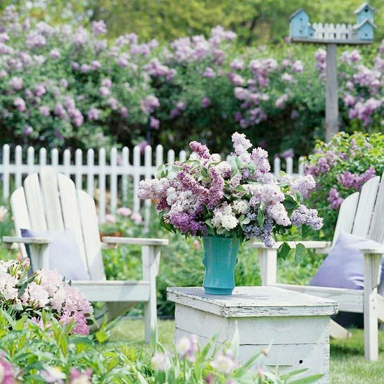 Adirondack chairs & lilacs.: Adirondack Chairs, Pastel Cerveza Tennis,  Pale, Backyard, Outdoor Spaces, Gardens Parties, Lilacs, Flowers Shrubs, White Picket Fence