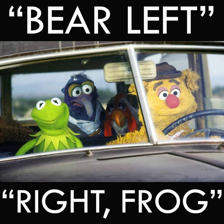 Muppet Quotes Muppetquotes: 25 Best Images About The Muppet Quotes And Sayings On