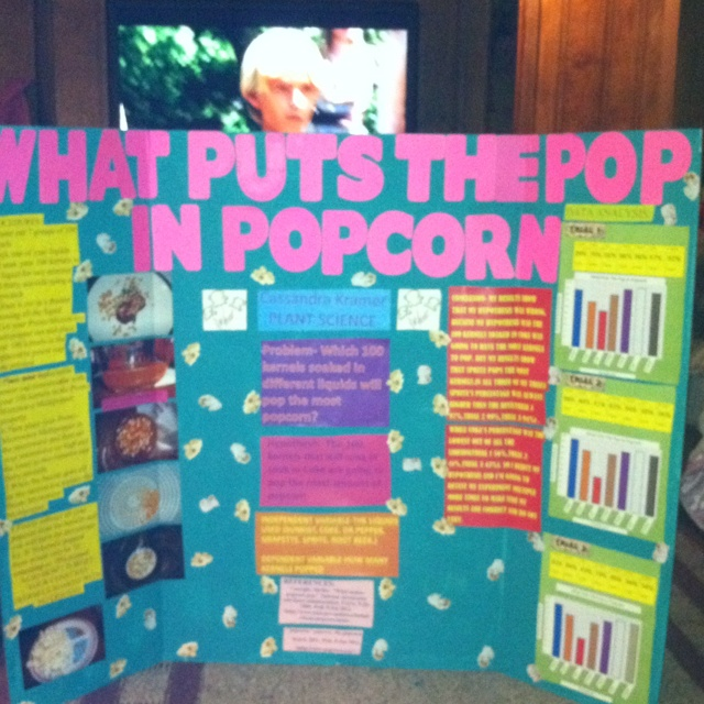 15 best 8th grade science projects images on Pinterest
