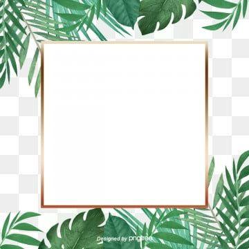 Green Little Refreshing Tropical Palm Leaf Golden Border Palm Leaf Botany Plant Border Png Transparent Clipart Image And Psd File For Free Download In 2020 Leaf Background Tropical Frames Leaf Clipart