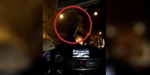Cronaca: Il #cliente #sceglie l'Ncc il tassista non ci sta e si aggrappa al cofano dell'auto: il condu... (link: http://ift.tt/2nmM5bv )