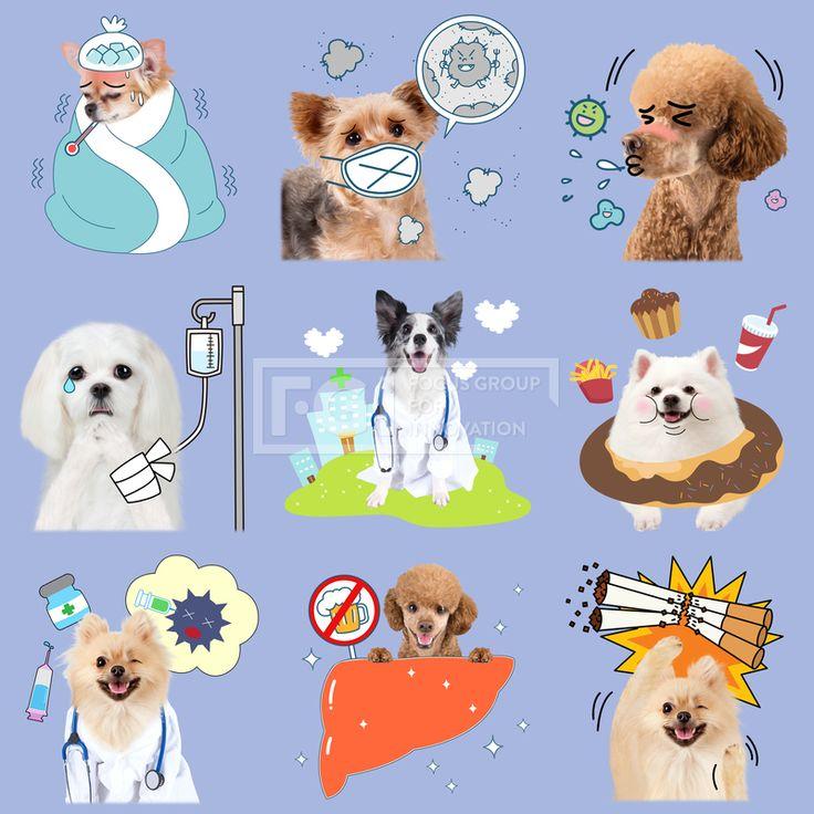 FUS193, 프리진, 그래픽, 그래픽, 인쇄, 편집, 인쇄편집, 합성, 편집포토, 배경, 풍경, 백그라운드, 오브젝트, 동물, 애완동물, 반려동물, 강아지, 고양이, 일러스트, 이모티콘, 스티커, 병원, 질병, 감기, 온도계, 이불, 몸살, 떨고있는, 얼음, 얼음주머니, 아픈, 먼지, 알레르기, 미세먼지, 황사, 마스크, 기침, 세균, 붕대, 눈물, 링거, 수액, 다친, 타박상, 구름, 하트, 의사, 청진기, 비만, 인스턴트, 빵, 음식, 음료수, 주사, 약, 치료, 윙크, 간, 금주, 건강, 금연, 담배, 괴로운, 기쁜, 웃고있는, 행복한, 이벤트,#유토이미지