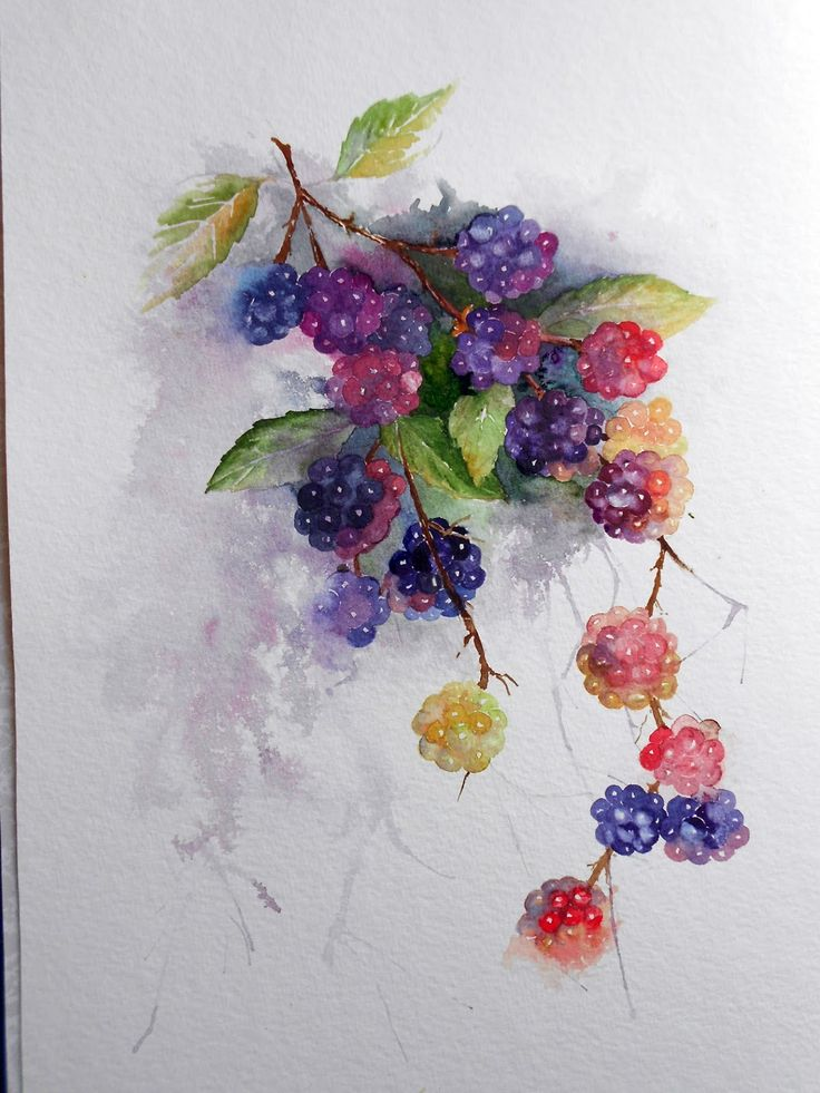 1000+ ideas about Watercolor Beginner on Pinterest   Easy ...
