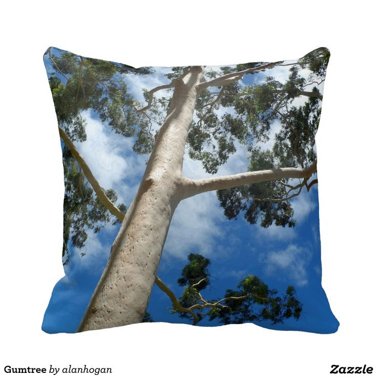'Gumtree' - Pillow from Zazzle/Alan Hogan. #trees #nature #up #gumtree #australia #photos