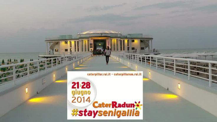 """Manifesto per il """"Caterraduno"""" di Senigallia :21/28 Giugno 2014 (""""Caterpillar""""/Radio Due).Sullo sfondo : la Rotonda a Mare....."""