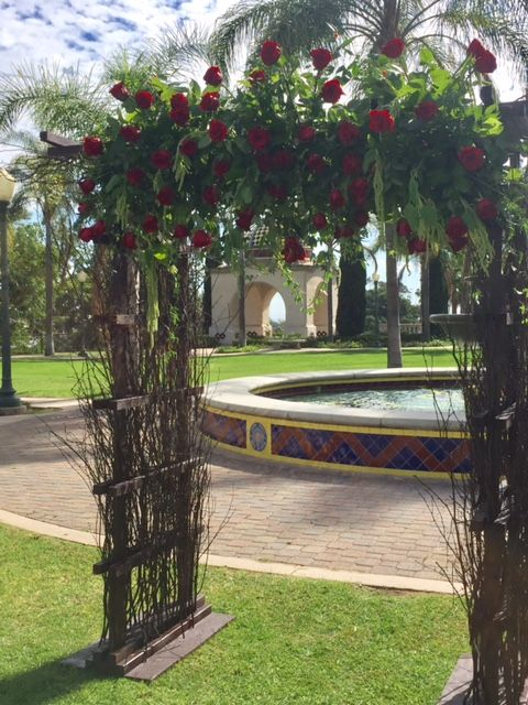 Our enchanted Arch looking vibrant with these delicate red roses