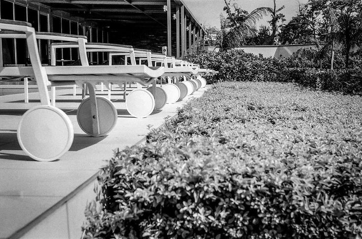 At The Pool - link in profile #photography #blackandwhitephoto #filmisnotdead #fineartphotography #shortstory #story #poems #pool #summer #heat #deckchair