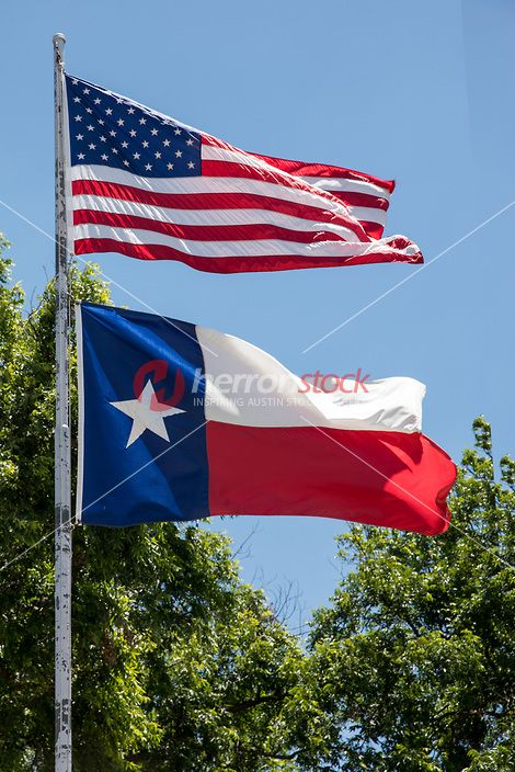 40 Best Texas Lone Star Icon Official Texas State Symbol Of The