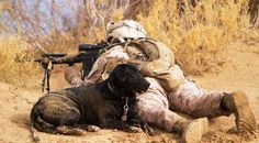 U.S. Marine Lance Cpl. Brandon Mann, a dog handler with Alpha Company, 1st Light Armored Reconnaissance Battalion, and Ty, an improvised explosive device detection dog.