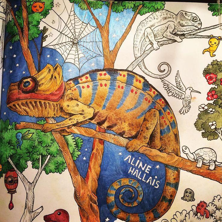 Image Result For Animorphia Chameleon Adult ColoringColoring BooksChameleonsAnimal KingdomReptilesDoodlesColor