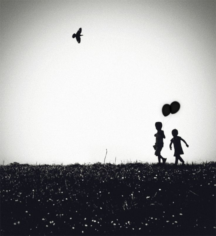 Summer Symphony By Hengki Lee On 500px Black And WhiteBlack