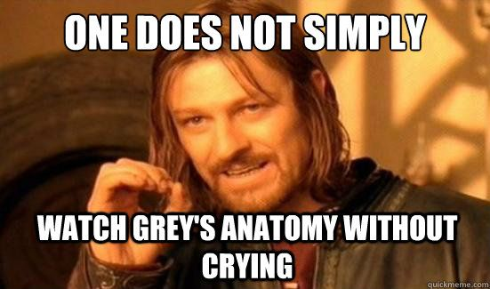 One does not simply watch greys without crying