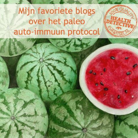 Mijn favoriete paleo auto-immuun protocol blogs | www.evawitsel.nl