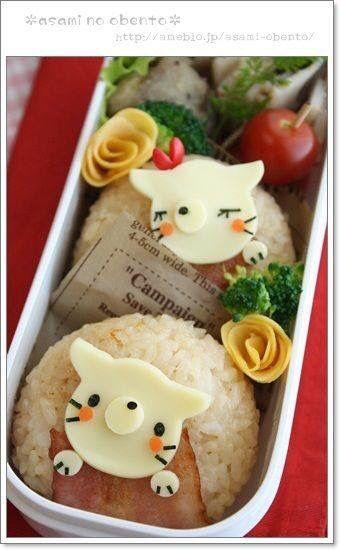 Gatos de arroz