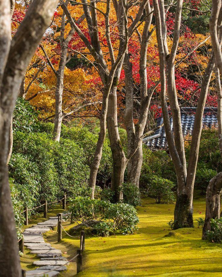 2017年11月24日 大河内山荘。ピークは過ぎていたけど、何度行っても素晴らしい庭園。秋と冬は大河内山荘が一番好きです。比較的マイナーだから、落ち着いて観られるのもいい。 #lovers_nippon #ig_japan #explorejpn #retro_japan_ #icu_japan #team_jp_ #retrip_news #japanigram  #instagramjapan #tokyocameraclub #igersjp #bestjapanpics #kyoto #japan #日本 #京都#写真好きな人と繋がりたい #カメラ好きな人と繋がりたい #嵐山 #大河内山荘 #紅葉 #秋 #庭園 #garden #arashiyama