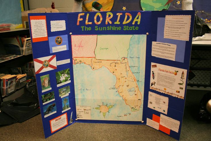 Best State Poster Ideas Images On Pinterest Poster Ideas - Unique science fair tri fold ideas