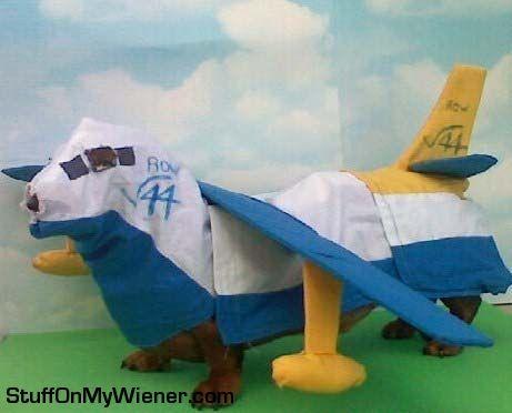 Cooper in an Albatross plane costume.