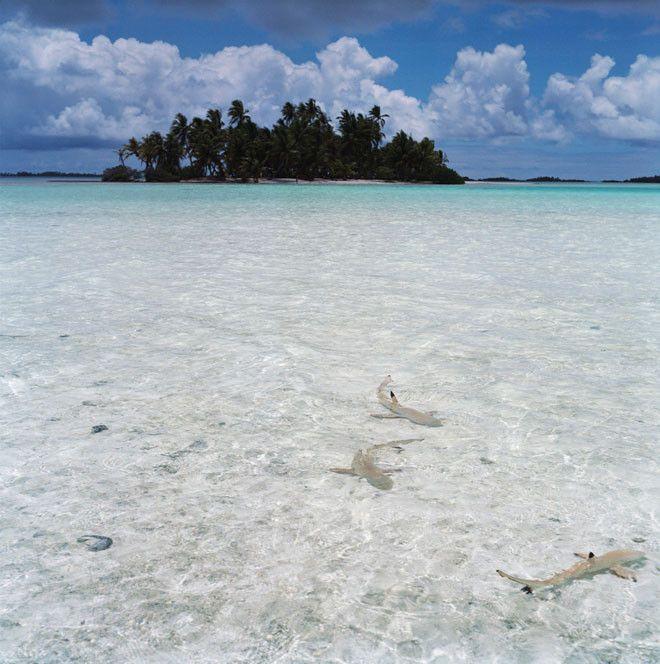 En el atolón de Rangiroa, en las islas Tuamotu, encontramos esta Laguna Azul.