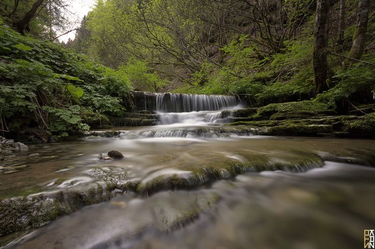 https://flic.kr/p/UB8Ufp   Flowing in the nature   Avio, Trento  Fotocamera: Canon EOS 650D Esposizione: 130 Aperture: f/11 Lente: 10 mm ISO: 100 Exposure Bias: 0 EV Flash: Off, Did not fire Lens: Sigma 10-20mm F4-5.6 EX DC HSM Filters: B+W ND110  NOTE: MY photos are NOT to be used or reproduced, COPIED, BLOGGED, USED in any way shape or form. Understand clearly these are my photographs and use of them by anyone is an infringement of my copyrights and personal artistic property!  © All…