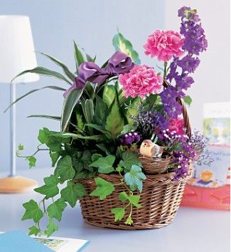 sympathy plant baskets with branches and birds | Garden Comforts $55.00 and Up