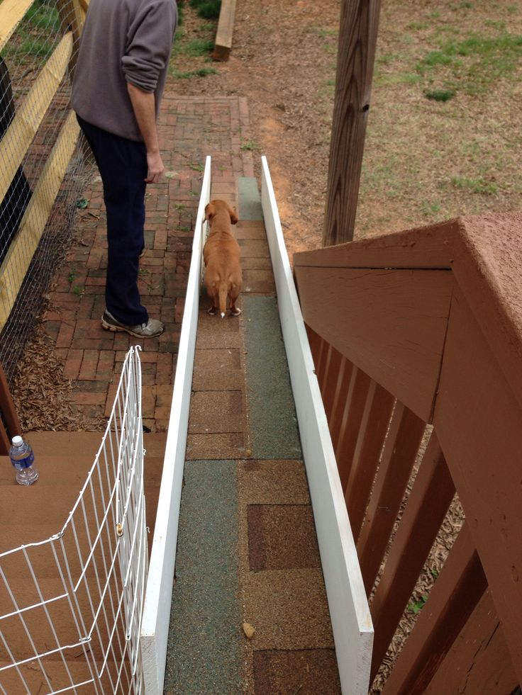 Home Made Dog Ramp For Dachshunds Or Other Small Dogs To Go Up And Down  Porch Stairs For The Base:1 10x12x2 Inch Board, Shingles Use Small Concave U2026