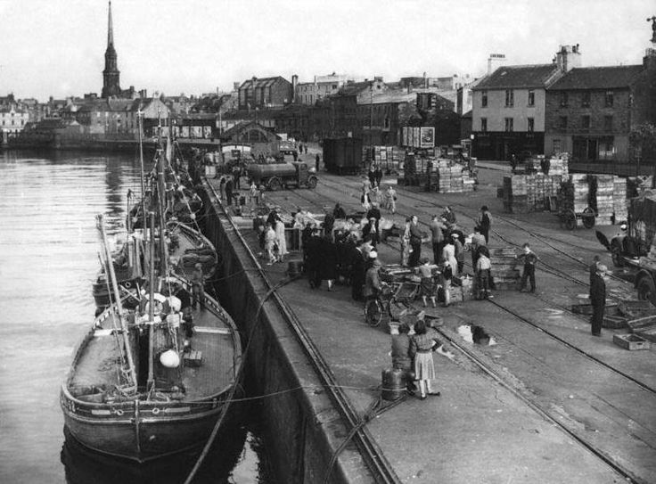 An Auction of the Catches at Ayr Harbour 1954