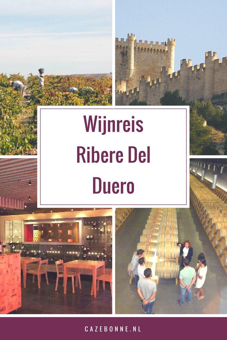 Ten noorden van Madrid ligt de wijnstreek Ribera de Duero. De wijngaarden strekken zich uit in de vallei langs de oever van de rivier de Duero en liggen op zo'n 700 m hoogte. Dit, samen met het extreem zonnige klimaat, zorgt ervoor dat hier topwijnen gemaakt worden die wereldwijd geroemd worden.