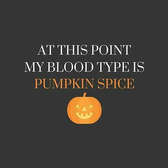 Pumpkin Spice Latte Memes To Get You Excited For Fall Happy Halloween Quotes Halloween Jokes Halloween Funny