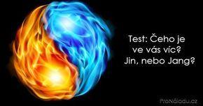 Čeho je ve vás víc? Jin, nebo Jang?