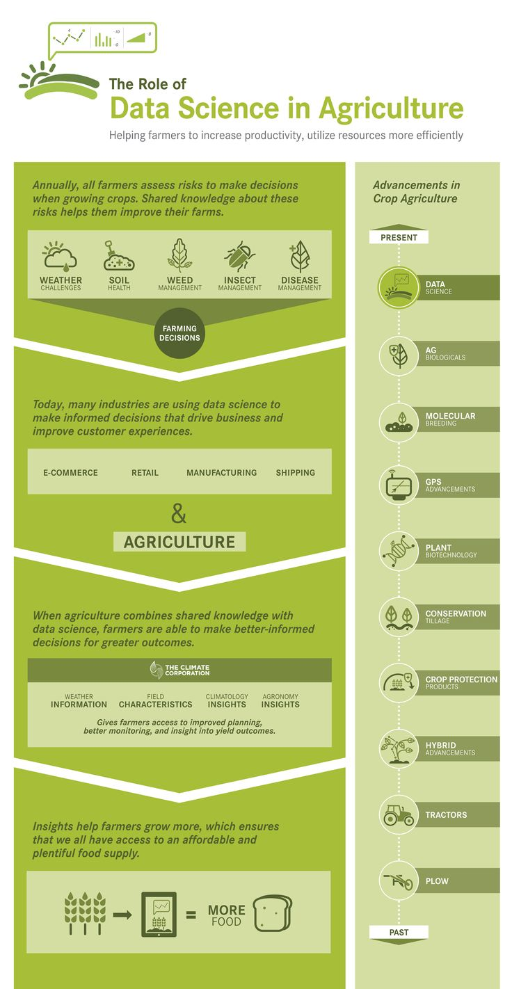 the role of agriculture in an Perspective -- civilization began with agriculture when our nomadic ancestors began to settle and grow their own food, human society was forever changed not only did villages, towns and cities begin to flourish, but so did knowledge, the arts and the technological sciences&#13 &#13 and for most of history, society's connection to the land.