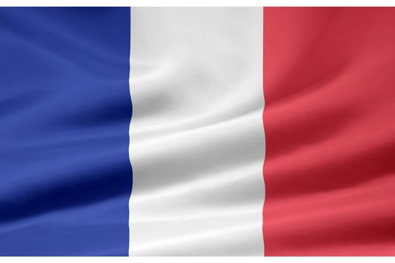 France Flag picture