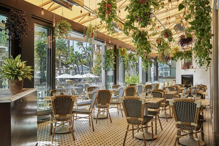 The bold flavours of the Mediterranean lure L.A.'s foodies to the waterfront at Santa Monica's excellent FIG...