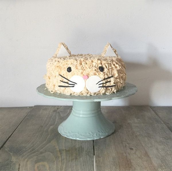Best Kitty Cake Ideas On Pinterest Kitten Cake Birthday - This cat eating a birthday cake is everything you need in life
