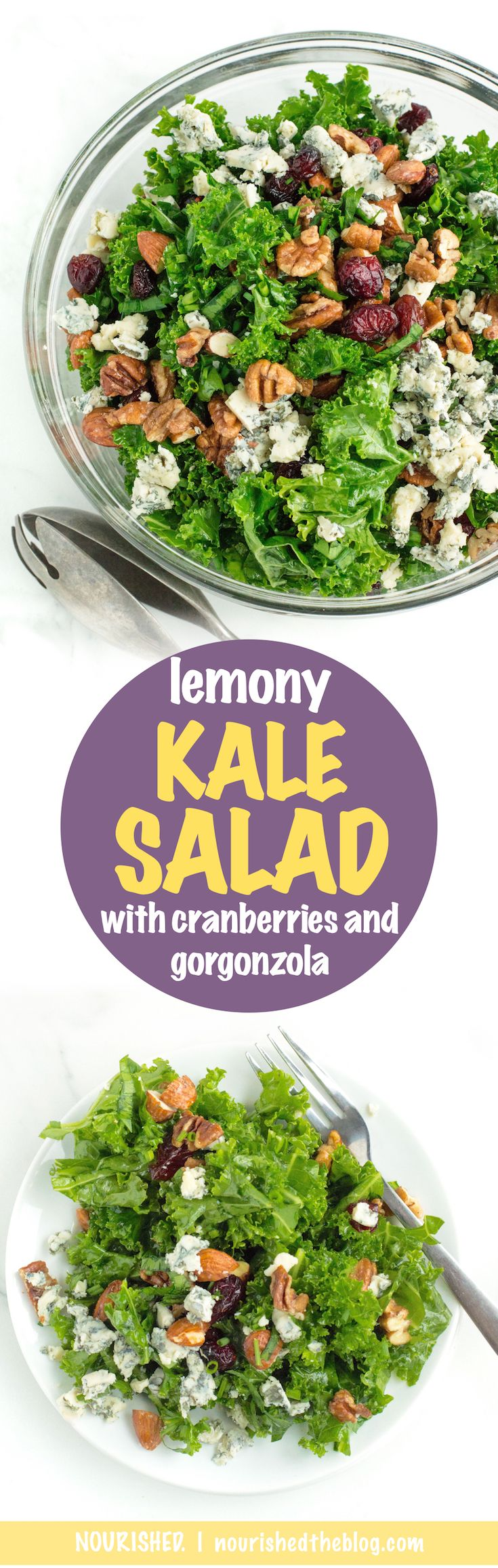 Lemony Kale Salad with Cranberries and Gorgonzola | A simple and healthy recipe for a lemony kale salad with dried cranberries and gorgonzola and candied nuts. This easy to make salad is gluten free and vegetarian-friendly and the perfect side dish for any dinner or party.