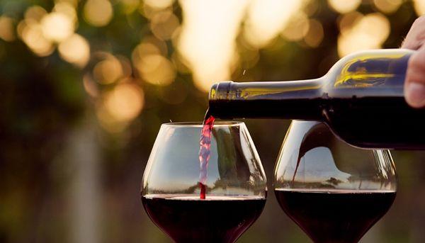 A Casa Lisboa deu dicas valiosas para acertar em cheio na hora de comprar vinhos. Vem ver as precauções de safra e garrafa